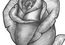 Lo mejor de rosas pintuco
