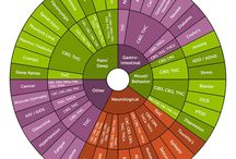 Cannabis / Marijuana Infographics / Educate, innovate, liberate. This is your visual guide to all things cannabis.