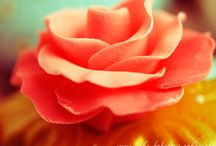 Sugar flowers / by Darlene - Make Fabulous Cakes