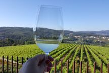 Vinhos / Wines