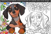 Colouring Books and Prints