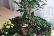 Gardening, flower, plants..