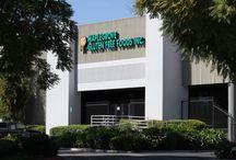 Maplegrove Gluten Free Foods, Inc. / The company, Maplegrove Gluten Free Foods, Inc.