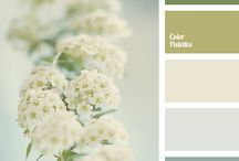 pale beige color & mood boards