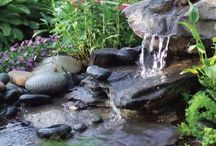 Pond & Water Fall's or Rock Beds for the yard / by Kim Boyette