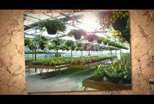 Gardening Videos