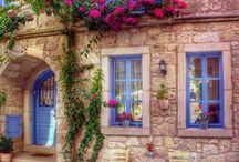 dům a květina