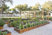 GARDENS / Gardening