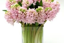 Administrative Professionals Appreciation Day / https://www.gabrielawakeham.com Exceptional flower arrangements delivered in NYC on April 26, 2017 to celebrate and thank Administrative Professionals for their outstanding work and contributions. High-end roses, peonies, orchids and calla lilies with NYC delivery on Administrative Professionals Day 2017