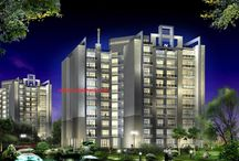 Commercial Property noida