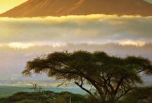 Africa / Explore the beauty !!