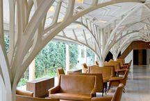 Organische architectuur