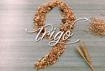 Granola 9 semillas / Elaborada a base de granos enteros como la Avena, Trigo, Cebada, Quinoa y Amaranto, la convierten en una fabulosa opción para un desayuno o snack completo y saludable, además de ser una excelente fuente de fibra, baja en sodio y grasa. ¡Disfruta sin remordimientos!