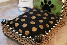 Dog Beds / by Rachel McCready