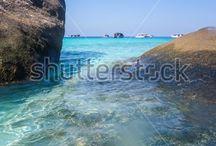 Jills Shutterstock Nature