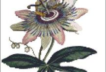 CrossStitch Flowers