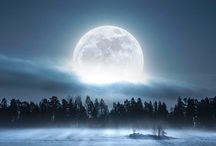 Holdfényes éjszaka