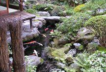 Японские сады.Japanese gardens.