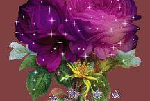 κινουμ λουλουδια