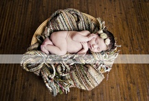 Newborn Photography / by Mandy Burnett