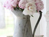 Flowers - fiori