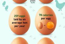 POWER lifestyle / Najlepšie vychytávky zo sveta výživy