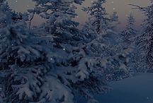 winter*tale