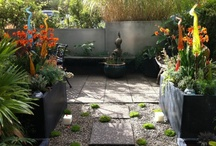 Landscaping ideas / by Crystal Wise Gilbert