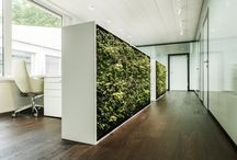Hirslanden Heart Clinic, Zurich, Switzerland / Hear the Green...! WSDG Provides Zurich´s Hirslanden Heart Clinic With Environmentally Sound Acoustics A leading Swiss architectural firm with an ongoing concern for acoustics, introduced an innovative interior design concept. http://www.prweb.com/releases/2014/04/prweb11746625.htm