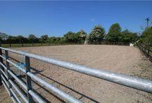Team Lorraine Mulligan Horse arena