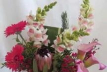 Flower Shops Near Me / Find Flower Shops near me with P3 Marketing and Houston Business Reviews.  www.HoustonBusinessReviews.org