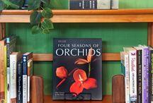 Style a Bookshelf