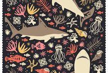 Shark / Love 4 Makos