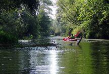 Spływy kajakowe / Prowadzimy małą wypożyczalnię kajaków i organizujemy spływy kajakowe po najciekawszych rzekach Polski i nie tylko. W wolnej chwili sami staramy się pływać i podziwiać ten nie znany dla zwykłego śmiertelnika świat z pozycji nurtu rzeki.