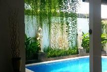 Bali Villas for Rent / Villas in Bali for Rent