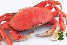 Our Fresh Seafood / Our seafood is fresh, sustainable, and delicious! Great for any meal and any occasion!