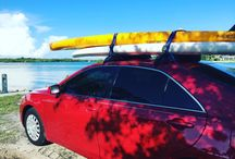 Stand Up Paddle Board Rentals Naples Florida / Naples Kayak Company Stand Up Paddle Board Rentals
