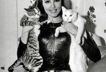 I wanna be Catwoman!