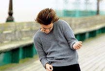 Harry (vale)