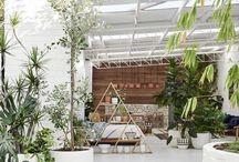 Urban garden / Inspiration for a small garden