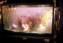 Aquarium Ideas