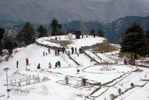 Tour Package In Shimla is really good as Shimla Tour Packages for lovely location / We Provide the best Residence and beautiful location facility In shimla. To visit tourist spot and Beautiful location In Shimla and Entire Himachal.