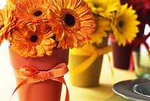 Thanksgiving / Thanksgiving food and decor