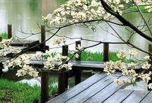 #zen&relax