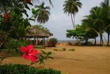 Kribi Sud Cameroun / Découvrez les beaux paysages de Kribi siuté dans le sud du Cameroun