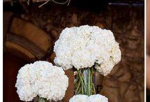 Beautiful Florals / by Victoria Allison