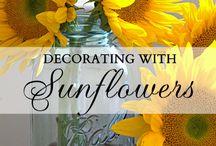 Sunflowers / by Jennifer Gibson