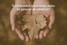 frases Ernesto Sabato