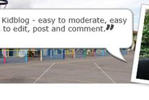 Blogging/Online Learning
