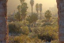 Baja / Baja California